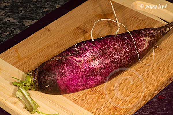 violet-de-gournay