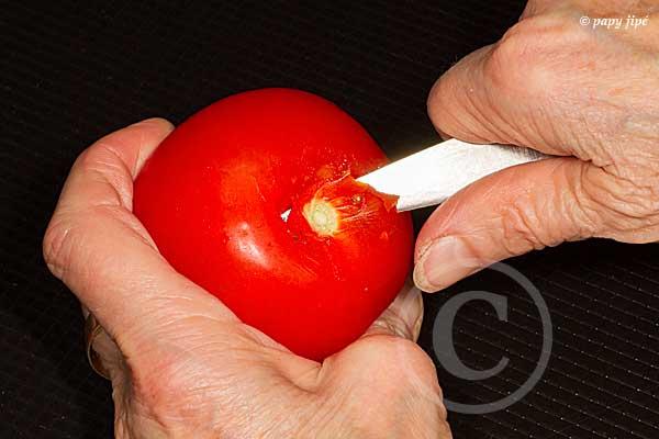 monder tomate1