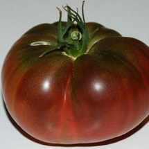 6-tomate-noire-crimee